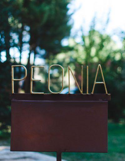 Suite Peonia Hotel Boutique Pinar Cuenca Hoteles con Jacuzzi